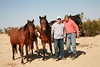 Dave & Rod with some of the horses