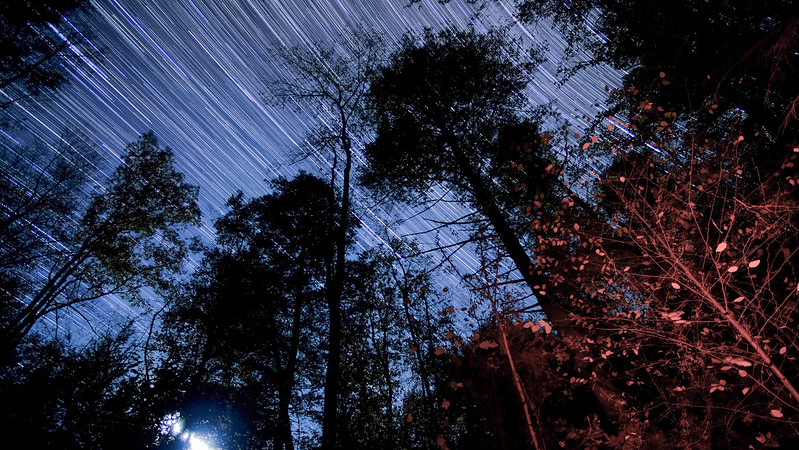 StarTrails over camp