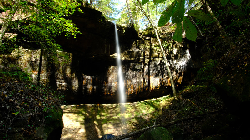 East Bee Branch Falls by the Big Tree