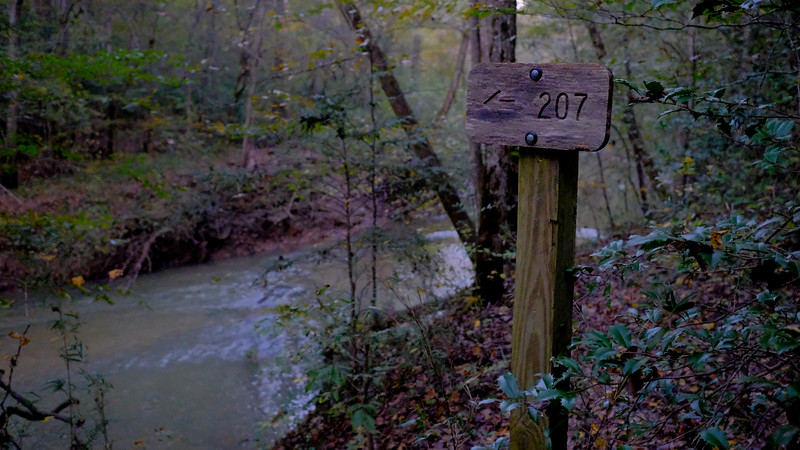Trail 207 :: I had to turn around because I didn't want to make the deep crossing