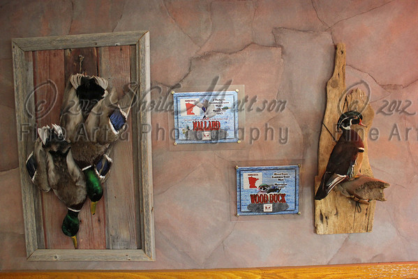Wild Game Trophy Signs,  Acrylic Example