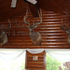 Wild Game Trophy Signs Aluminum Metal Print Example