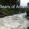 Bears of Anan