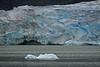 AAA00239 glacier up close