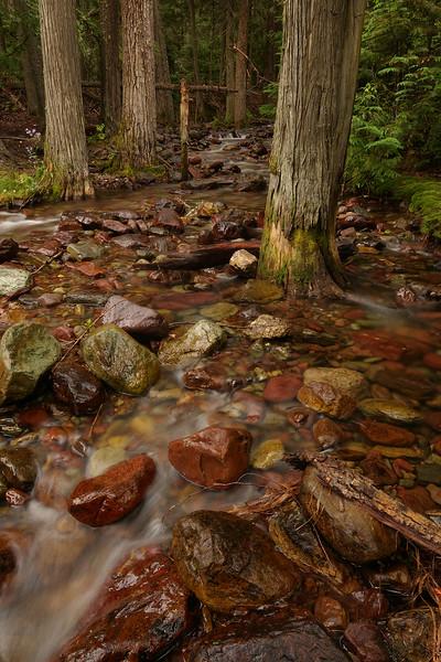 AAA02376 creek 2