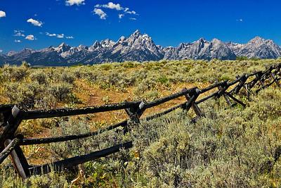 IMG_9064 fence