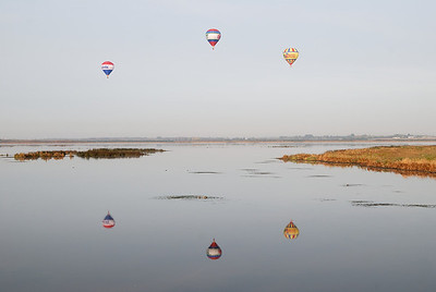 A crisp fall morning finds hot air balloons transporting wildlife watchers over Big Lake