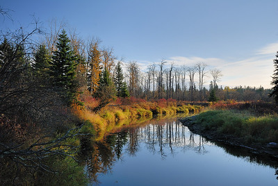 Evening light over the still waters of the upper Sturgeon River