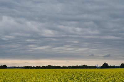 Edmonton sky