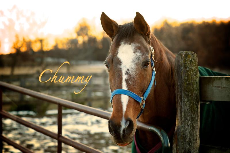 Chummy July