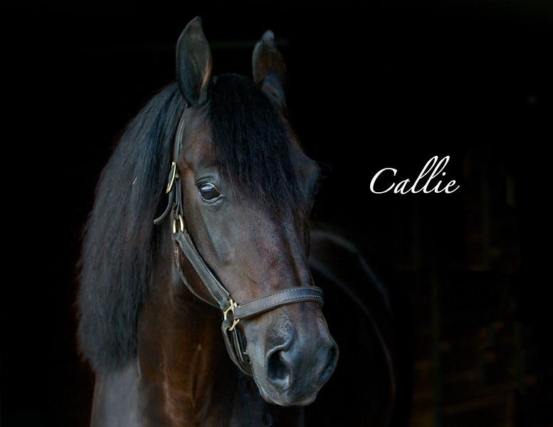 Callie December
