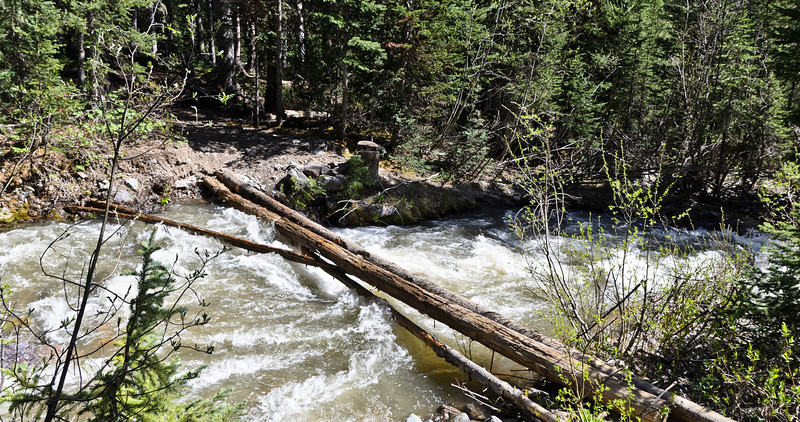 The first major crossing of Elk Creek. (Notice I said the first). This was actually the easiest of the major crossings as it had a couple of logs to walk across.