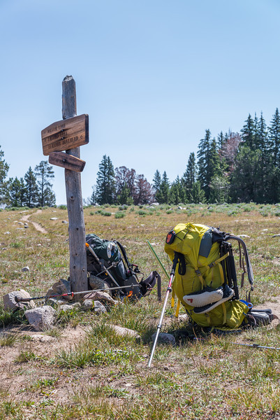 A couple miles in from Elkheart Park Trail head, we stopped at a sign for a break and a look around at the scenery that awaited. My new yellow Gregory Baltero would prove to be an excellent pack.