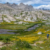 After a relaxing lunch break Steve and I made our way to Titcomb Basin. The wild flowers were incredible here.