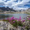 This was the first lake we came to in Titcomb Basin. Beautiful wild flowers ornamented this nearly perfect scene.