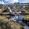 Streams flowed among the rocks.