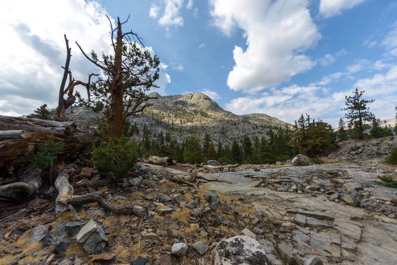 After leaving the Muir Trail Ranch I crossed over the San Joaquin River and into King's Canyon National Park.