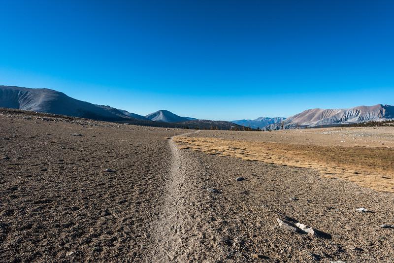 Heading south across the Big Horn Plateau.