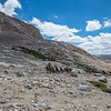 While stopped for a break, this mule train came up the valley heading for Forester Pass.