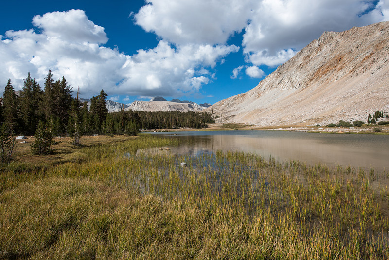 After crossing Forester Pass, we made our way to Tyndall Frog Ponds and set up camp. The grasses around these ponds were actually full of frogs! It was difficult to avoid stepping on them.