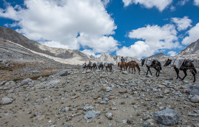 The mule train heading off to the pass.