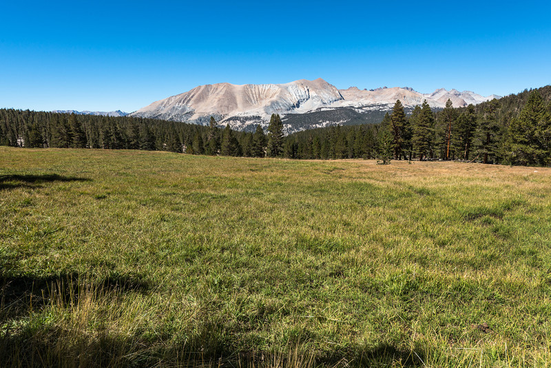 A beautiful meadow on the way to Guitar Lake.