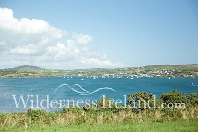 Sherkin Island Aug 2014 RS 45