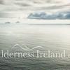 Portmagee-Skellig Islands Aug 2014 RS 7
