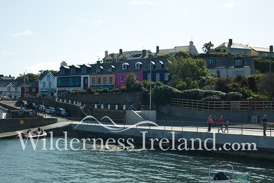 Sherkin Island Aug 2014 RS 1