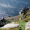 Skellig Islands Aug 2014 RS 37