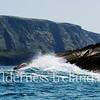Skellig Islands Aug 2014 RS 65
