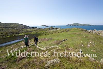 Sherkin Island Aug 2014 RS 37