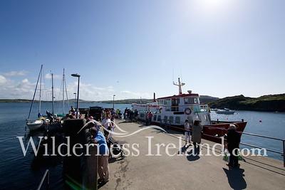 Sherkin Island Aug 2014 RS 8