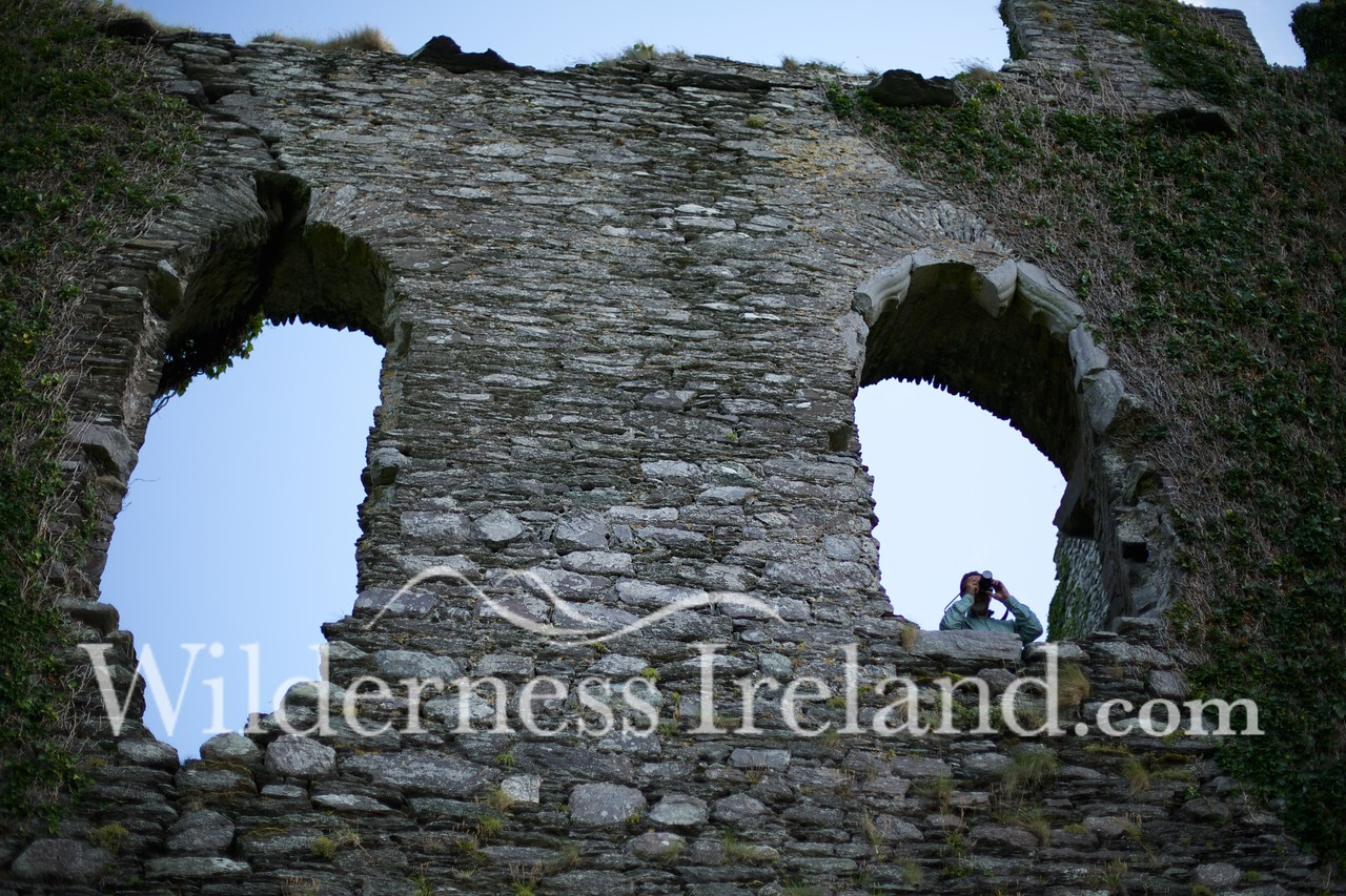 Fort and Castle Aug 2014 RS 31