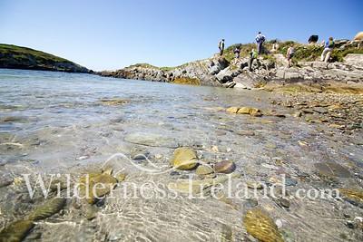 Sherkin Island Aug 2014 RS 26