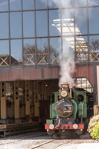The Rainforest Locomotive