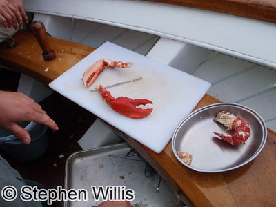 Getting into the lobster....