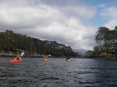 Day 4, Loch Maree.
