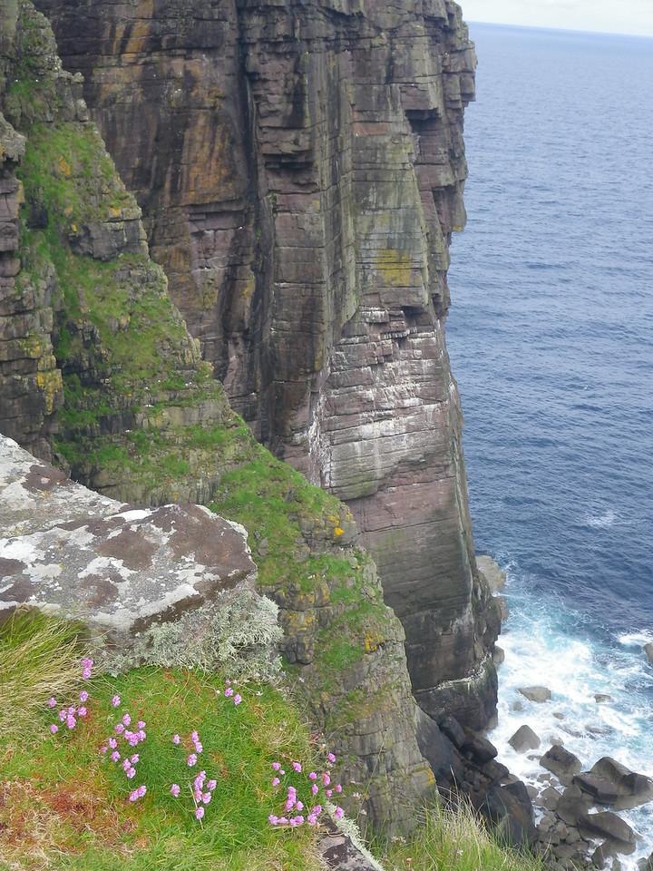 Handa's cliffs