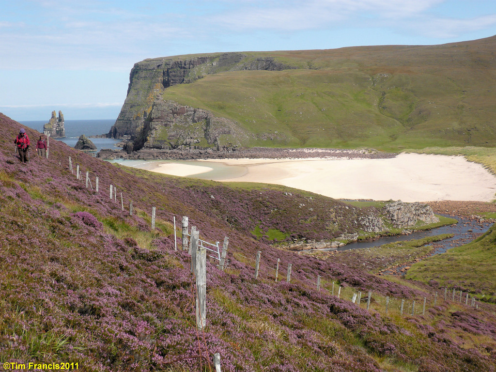 Cathedral Rock & heather at Kervaig, Cape Wrath.