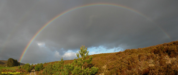 Corrimony rainbow.