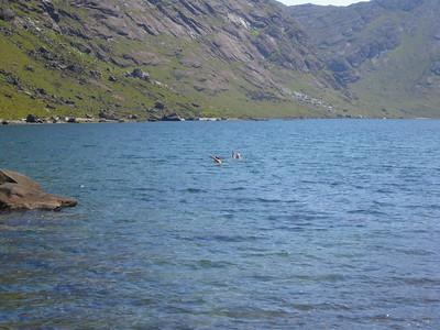 Wild swimming in Loch Coruisk