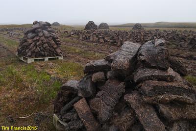 Peat - it's not just mud!