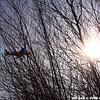 WJB_2009_03_23_305