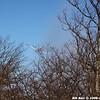 WJB_2009_03_23_245