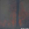 WJB_2009_04_27_083