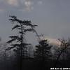 WJB_2009_04_27_530