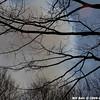 WJB_2009_04_25_087