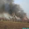 WJB__2010_04_07_1793