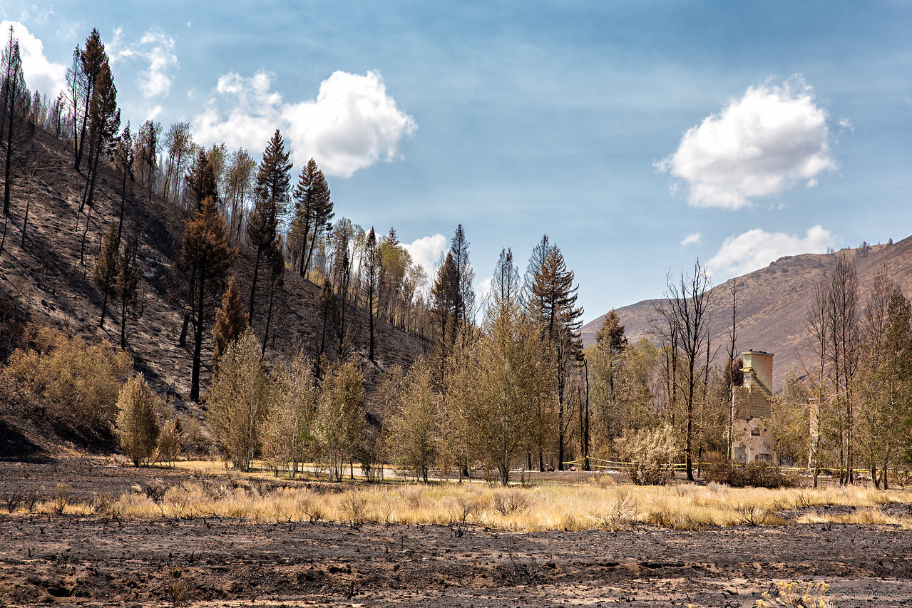 Very unfortunately, not all houses survived.  Greenhorn Gulch.  August 25, 2013